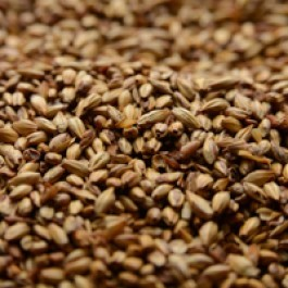 Briess American Crystal Malt 40