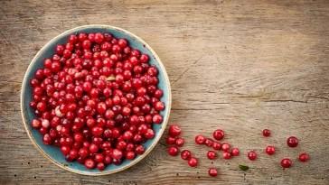 Cranberry Fruit Puree