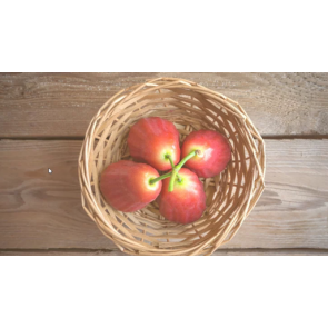 Pink Guava Fruit Puree