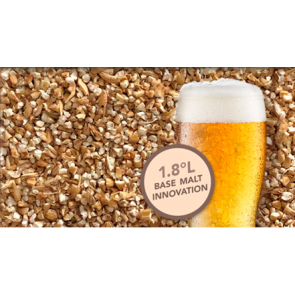 Briess Synergy Select Pilsen Malt Gems