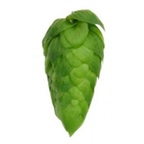 American Noble Hop Pellets
