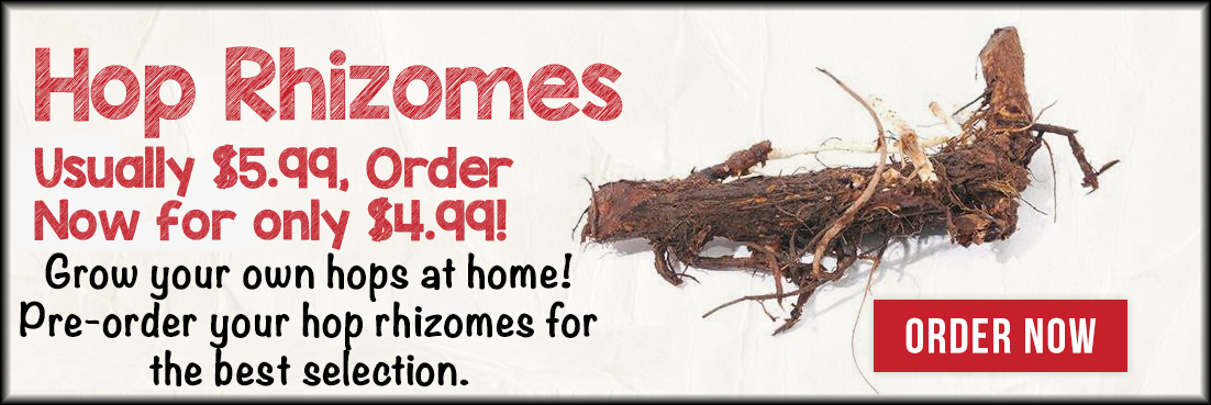 Get your hop rhizomes now
